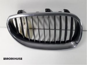BMW 5-Serie Grille